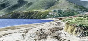 Isola d'Elba - Andrea Ambrogio